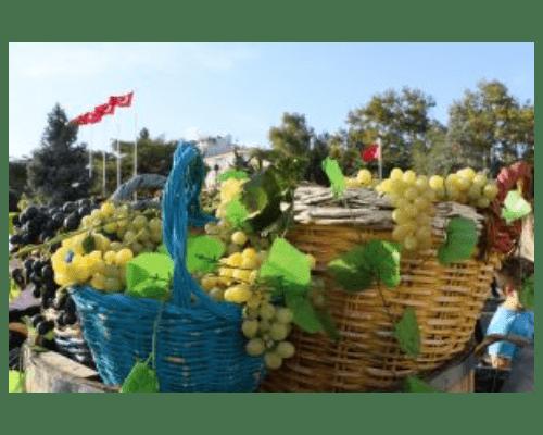 11'inci Kırklareli Yayla Bolluk, Bereket,Hasat ve Bağbozumu Şenliği'nde 68 stand kuruldu ve 2 Ton üzüm dağıtıldı.
